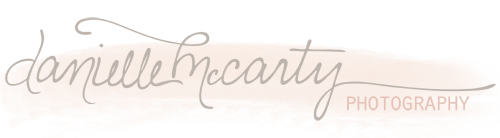 Danielle McCarty Photography Blog logo